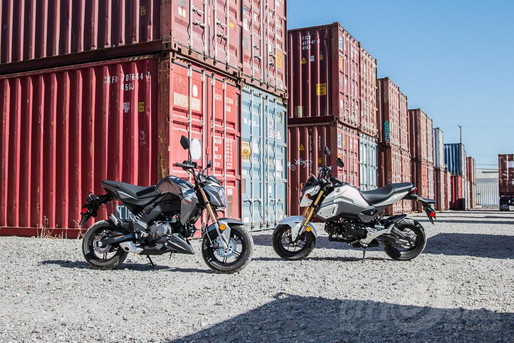 Gromplestiltskin Vs Zeelzebub Hondas Updated Grom Kawasakis